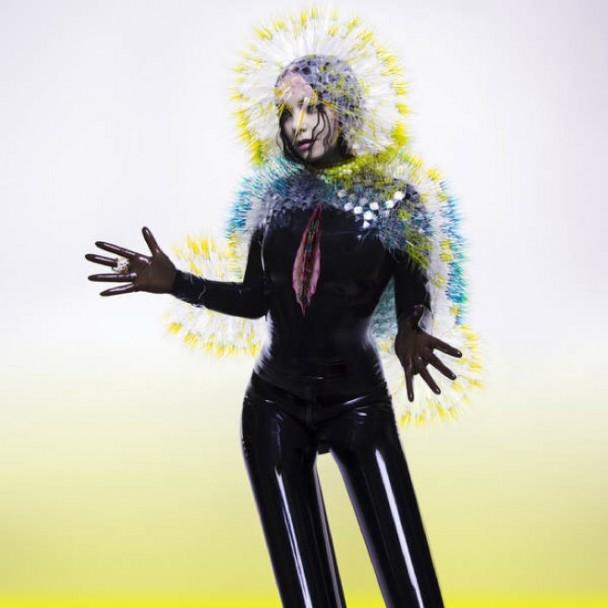 Björk x Inez & Vinoodh x Vulnicura