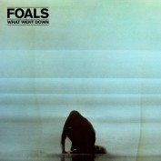 Foals x Daisuke Yokota – What Went Down