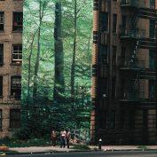 Go!Zilla x Thomas Hoepker x Elzo Durt – Modern Jungle's Prisoners
