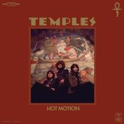 Temples x Laura Allard Fleischl x Delaney Jae Williams — Hot Motion